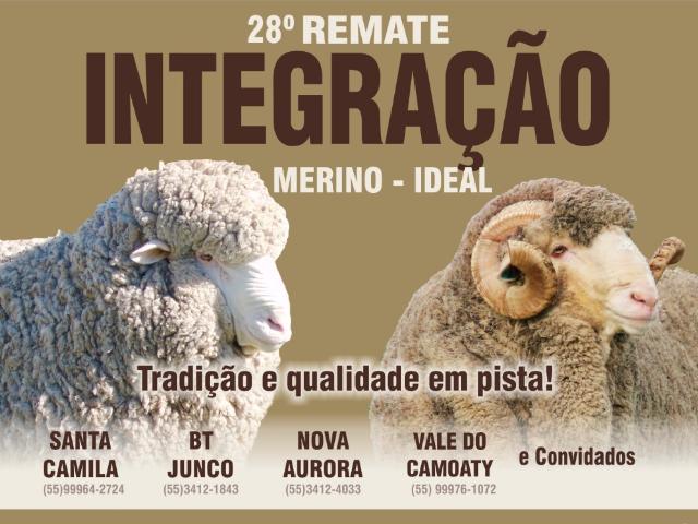 28º Remata Integração - Merino - Ideal