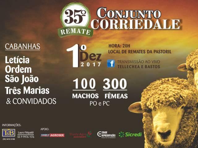 35° Remate Conjunto Corriedale