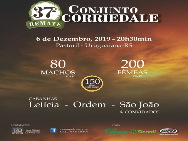 37° CONJUNTO CORRIEDALE
