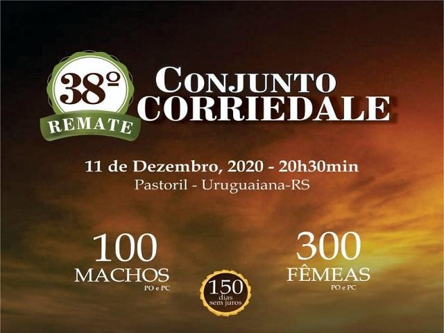 38º REMATE CONJUNTO CORRIEDALE