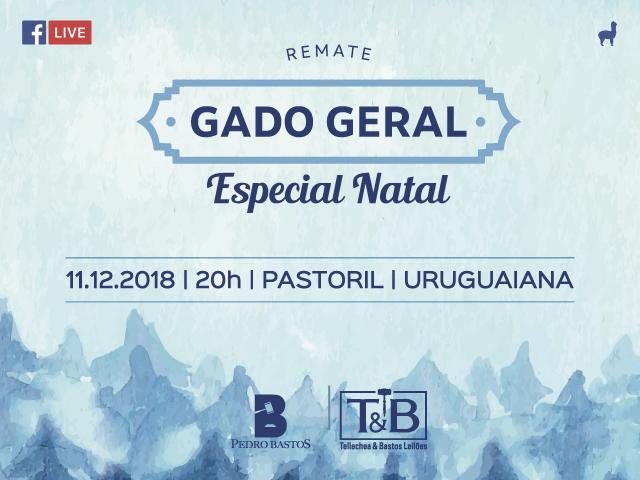 REMATE GADO GERAL - ESPECIAL DE NATAL