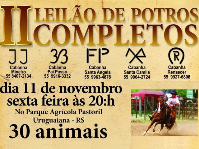 II LEILÃO DE POTROS COMPLETOS