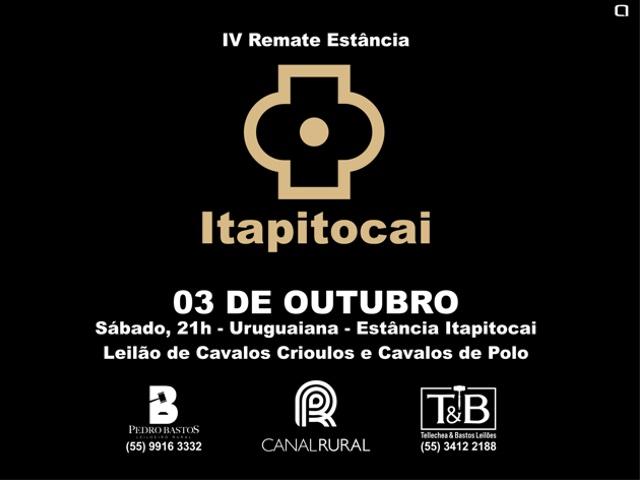 Leilão Itapitocai