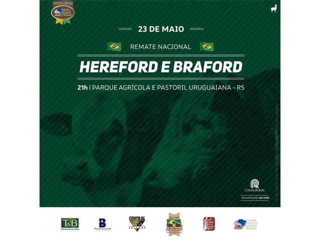 Leilão Nacional Hereford e Braford 2019