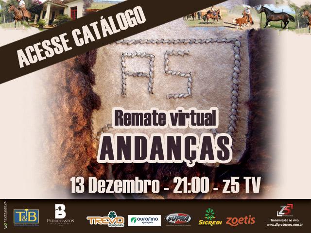 REMATE ANDANCAS CHINCADOR