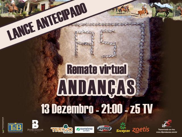 REMATE ANDANÇAS CINCHADOR