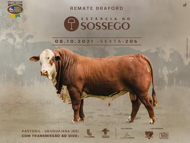 REMATE BRAFORD ESTÂNCIA DO SOSSEGO