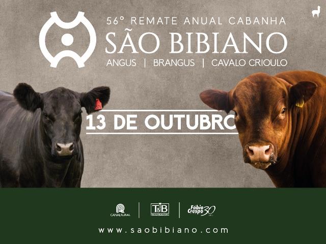 REMATE CABANHA SÃO BIBIANO