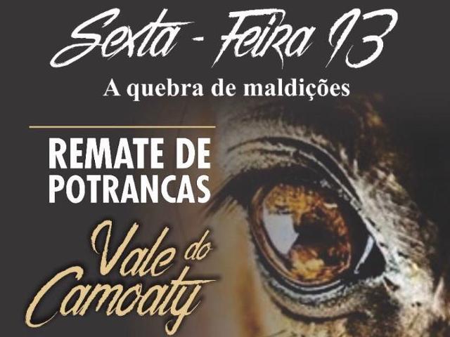 REMATE DE POTRANCAS - VALE DO CAMOATY