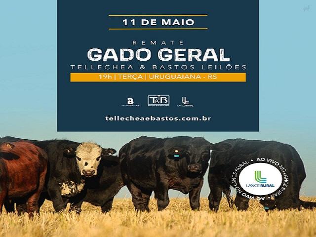 REMATE GADO GERAL