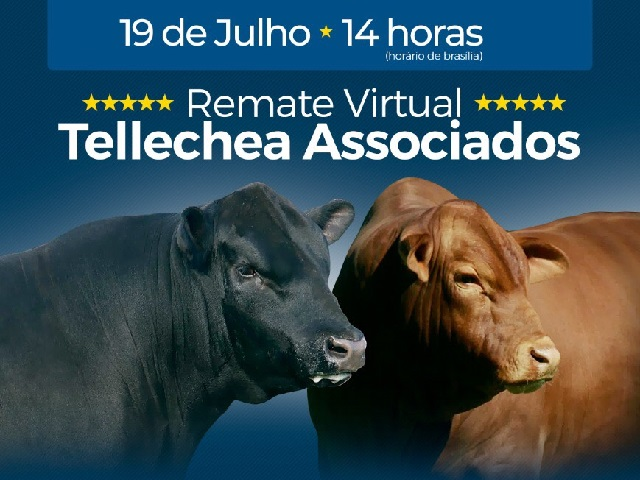 REMATE VIRTUAL TELLECHEA ASSOCIADOS