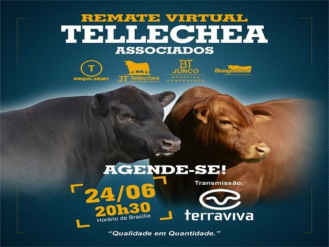 REMATE VIRTUAO TELLECHEA ASSOCIADOS