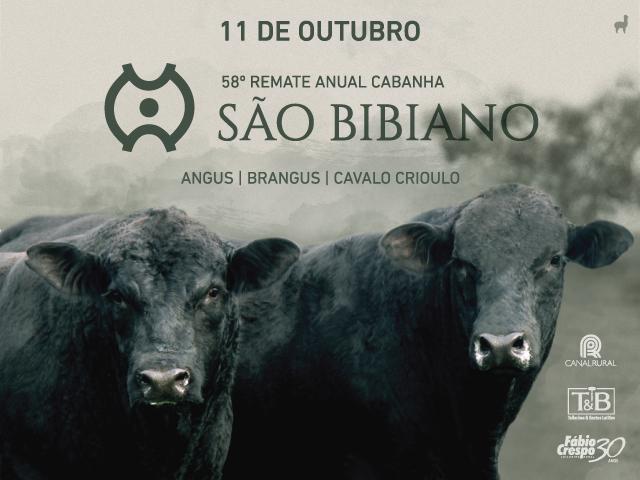58 Remate Anual da Cabanha São Bibiano
