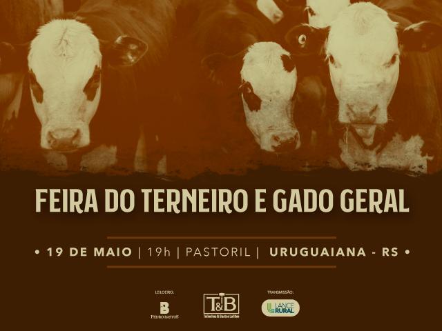 FEIRA DO TERNEIRO E GADO GERAL
