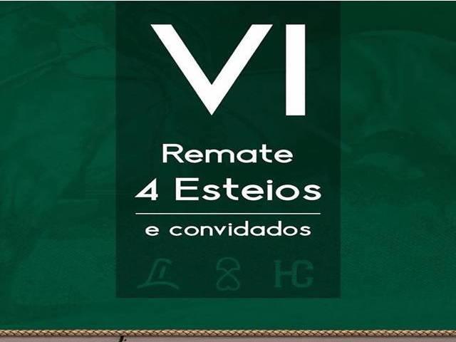 VI Remate  4 Esteios e Convidados